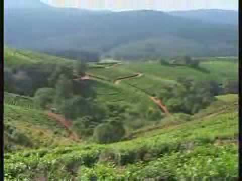 Limpopo Africa's Eden