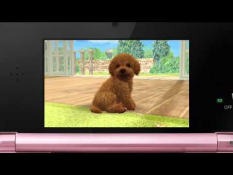 Nintendo 3DS CF