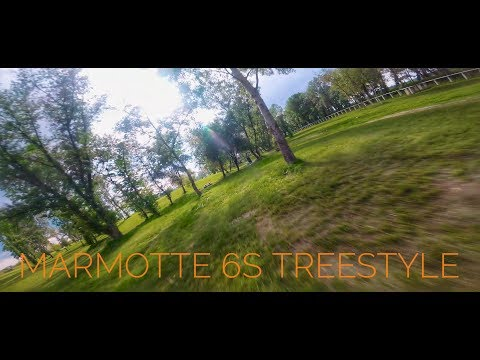 6s treestyle//armattan marmotte - UCi9yDR4NcLM-X-A9mEqG8Hw