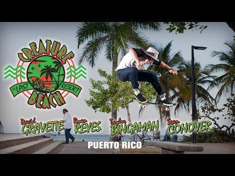 Creature Beach: Puerto Rico - UCQ7s6BDa1x7tIfbYmGQ_dZg
