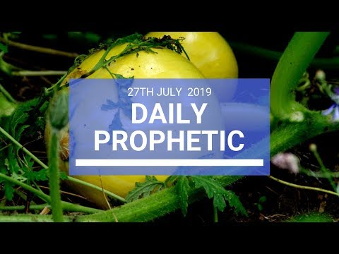 Daily Prophetic 27 July 2019 Word 2