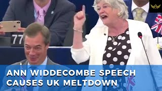Ann Widdecombe speech causes UK meltdown, comparing EU to slave owners or colonizers