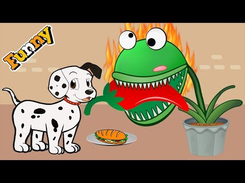 Dogs Cartoons for Children - Dogs and Carnivorous Plant - Funny Animals Cartoons Compilation - UC_5YujqsMeuerqri1sQfAmg