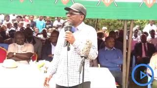 Senator Orengo steers ODM leaders in bashing DP Ruto's allies for remarks against Tuju