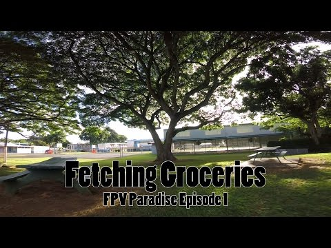 Fetching Groceries // FPV Paradise Episode #1 // #TeamUSAFPV // Drone Worlds - UCPCc4i_lIw-fW9oBXh6yTnw
