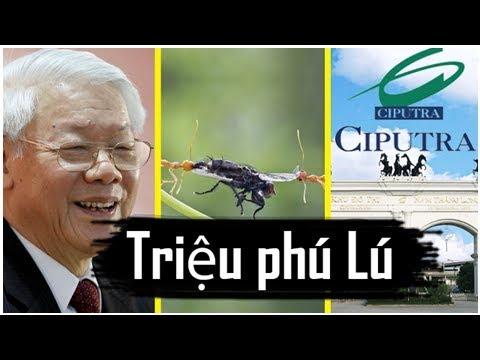 Nguyễn Tấn Dũng tung bằng chứng Tổng BT nhận hối lộ hàng triệu USD từ Ciputra