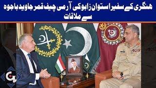 Hungarian ambassador meets COAS Bajwa, discusses regional security