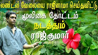 Agriculture and organic farming Chennai herbal plants garden Tamil