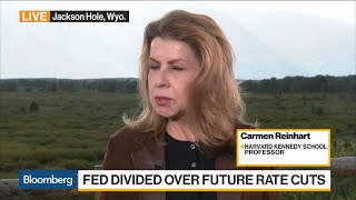 Fed Really Sets Global Interest Rates, Says Professor Reinhart
