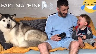 Baby Can't Stop Laughing While Pranking Husky Dog With Fart Machine!..