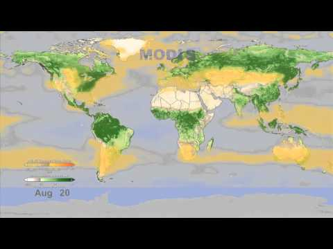 NASA Satellite Sees Earth Breathe | Video - UCVTomc35agH1SM6kCKzwW_g