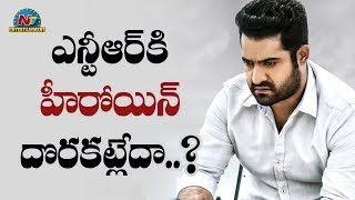British Actress Finalized For NTR in RRR | NTV Entertainment