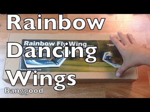 DW HOBBY Rainbow 800mm Wingspan EPP Flying Wing- Banggood - UCTa02ZJeR5PwNZK5Ls3EQGQ