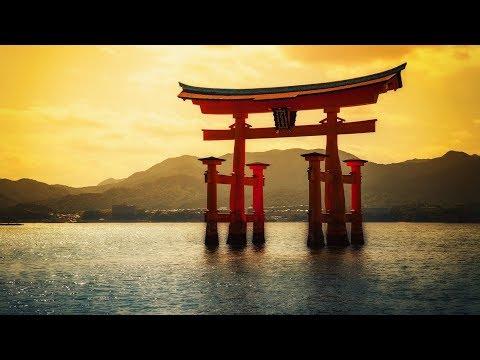 Cuộc hạnh ngộ với Hòa Thượng Thích Tuấn Hùng đến từ Nhật Bản (2/2)