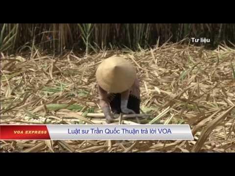 12 tỉnh xin gạo cứu đói cho thấy bất cập trong 'phân phối lợi nhuận'