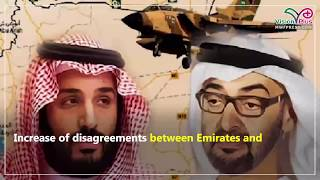 Video Clip: Emirates' reasons for gradual withdraw from Yemen war