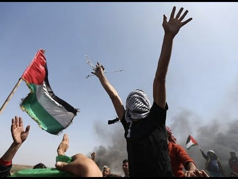Breaking Protest In Gaza 69 Injured 29 Wounded Holy Land