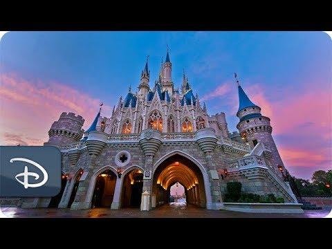 #DisneyParksLIVE: Sunrise at Magic Kingdom | Walt Disney World - UC1xwwLwm6WSMbUn_Tp597hQ