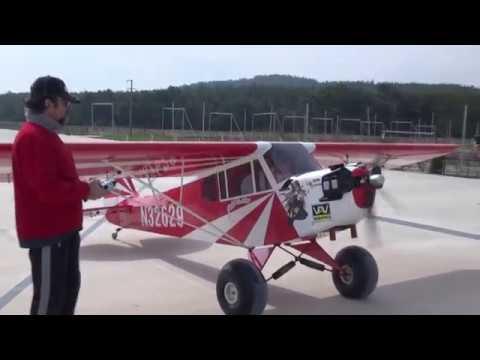 Pipercub %60 Scale Clipped Wing - UCP1C9yuuw7Dl9cYBSwZrqrQ