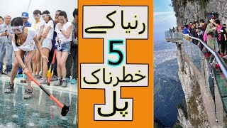 Top 5 Most Dangrous Bridges In The World | Facts About The World | Urdu/Hindi | Nimi Facts