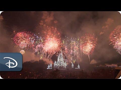 Fantasy in the Sky - New Year's Eve 2016 at Magic Kingdom - UC1xwwLwm6WSMbUn_Tp597hQ