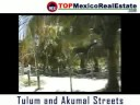 Tulum and Akumal streets by Top Tulum Real Estate