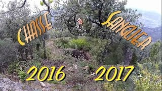 Chasse au sanglier, ma saison 2016 2017