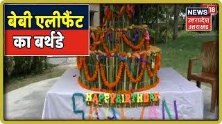कॉर्बेट पार्क में धूमधाम से मना बेबी एलिफेंट का जन्मदिन, घास और फलो से बनाया गया 140 किलो का केक