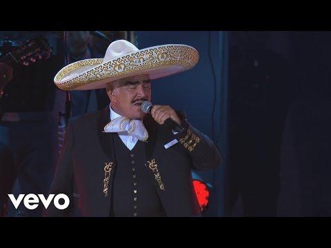 Vicente Fernández - Hermoso Cariño (En Vivo)[Un Azteca en el Azteca][Versión Editada] - UCK586Wo8pKz0C50xlSZqSDA