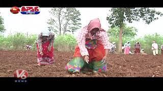 Farmers Gearing Up For Cultivation Crop | Teenmaar News | V6 News