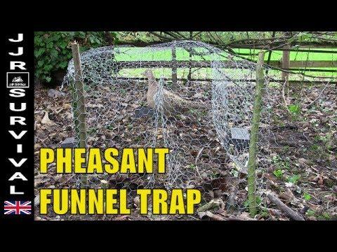 Pheasant Funnel Trap