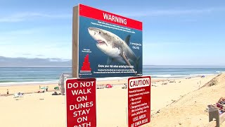 New shark warning signs, bleeding control kits added to Cape Cod beaches