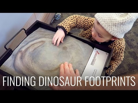 Finding Dinosaur Footprints & AOP Woodfire Grill for dinner