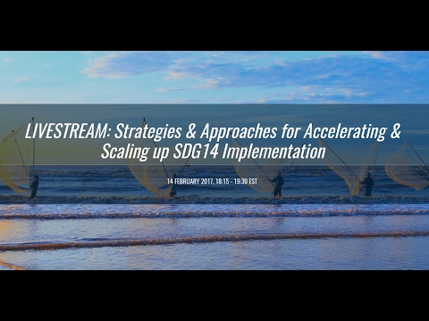 Strategies & Approaches for Accelerating & Scaling up SDG14 Implementation