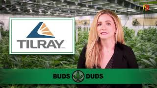 Buds & Duds: Cannabis stocks lag but Weekend Unlimited shares jump