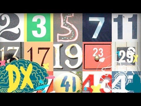 Los números primos y la criba de Eratóstenes