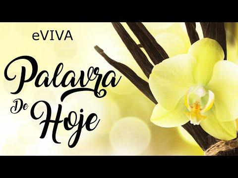 PALAVRA DE HOJE 08 DE JULHO 2020 eVIVA MENSAGEM MOTIVACIONAL PARA REFLEXÃO SALMO 126 BOM DIA MANHÃ!