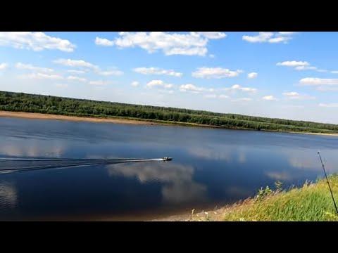 В деревню на рыбалку / Рыбалка на спиннинг / Тестируем новые силиконовые приманки