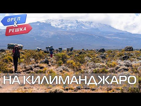 Подъем на Килиманджаро с Орёл и Решка!