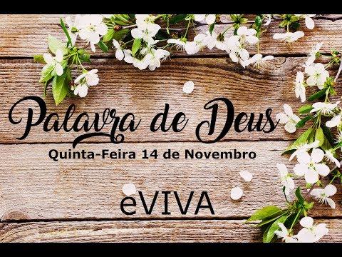 PALAVRA DE DEUS PARA HOJE 14 DE NOVEMBRO eVIVA MENSAGEM MOTIVACIONAL PARA REFLEXÃO DE VIDA