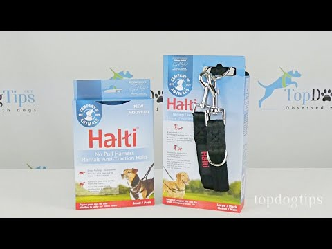 Halti No Pull Dog Harness and Lead Giveaway ($35+ Value)