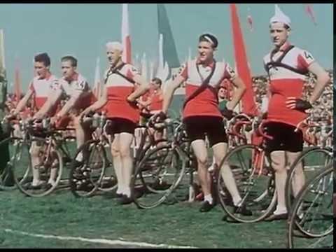 Peace Race trailer
