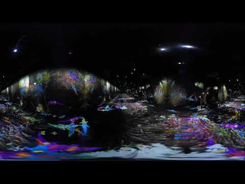 Step inside TeamLab's digital installations in 360-degree video | Dezeen
