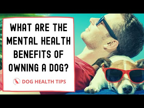 What are the mental health benefits of owning a dog 2021 ! Dog health tips ! Pet lovers