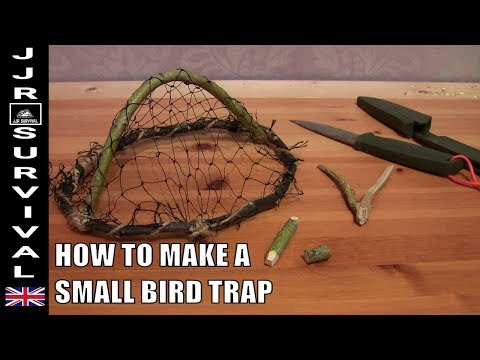 HOW TO MAKE A SMALL BIRD TRAP