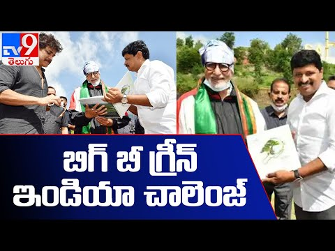 Green India Challenge: Amitabh Bachchan plants saplings at Ramoji Film City- TV9
