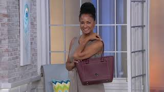 Dooney & Bourke Leather Beacon Collection Slip Tote on QVC