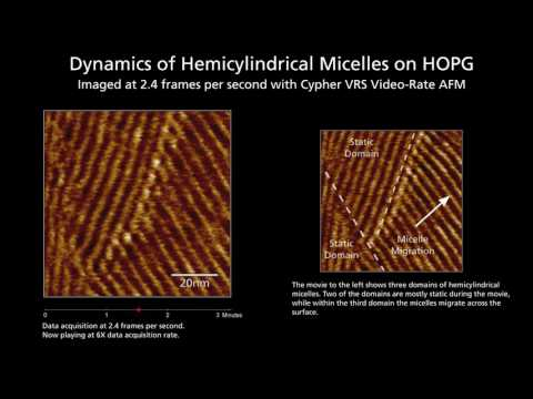 Dynamics of Micelles captured @ 2.4 fps with the Cypher VRS Video-Rate AFM