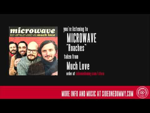 Microwave - Roaches