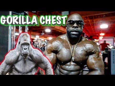 Kali Muscle - GORILLA CHEST WORKOUT  🦍